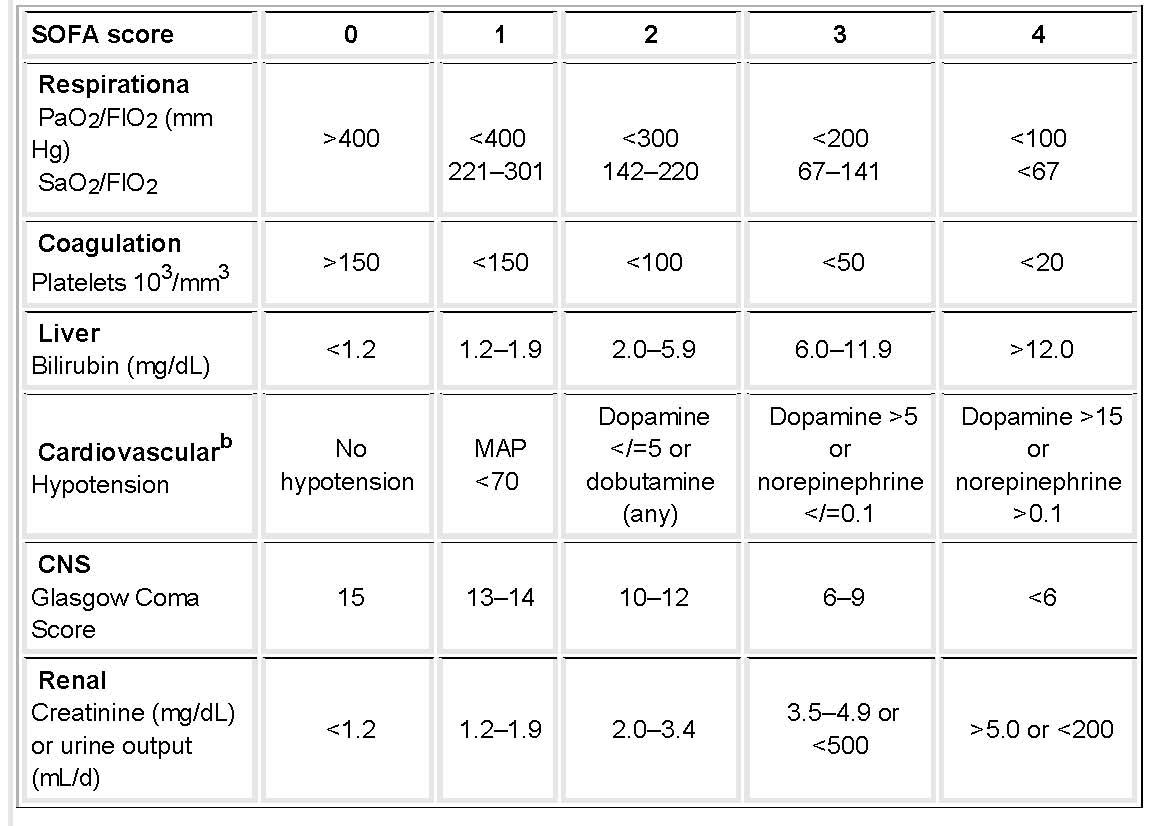 Respiratory Critical Care and Sleep Medicine: November 2009