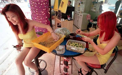 vietnamese ladyboy sex