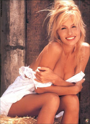 Lady Gaga Wallpaper Iphone Young Pamela Anderson