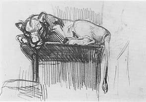 George Luks Studies in the Bronx Zoo Lioness