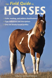 Our latest book on horses