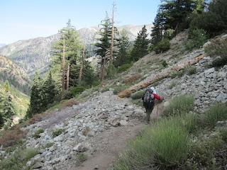 Descending Icehouse Canyon