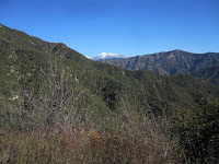 View east toward Glendora Mt. and Mt. Baldy