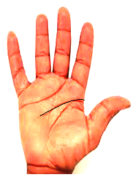 Palmistry Hand - Businessman Hand lines