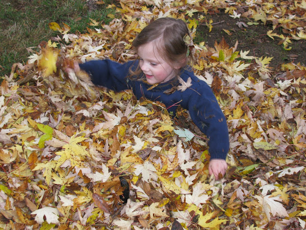 10 Fun Fall Projects for Kids