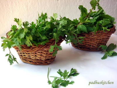 coriander leaves and mint leaves