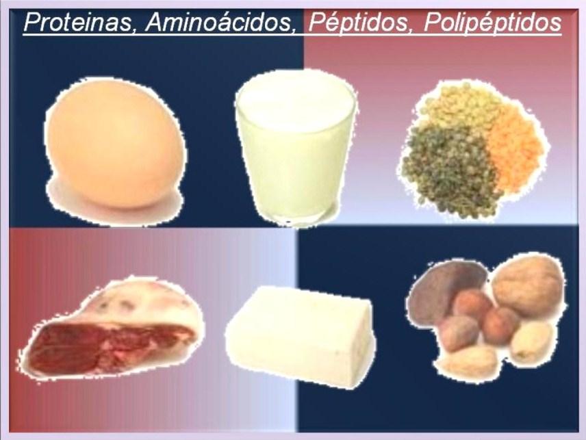 calamares para acido urico acido urico wikipedia pt cuales alimentos son ricos en hierro y acido folico wikipedia