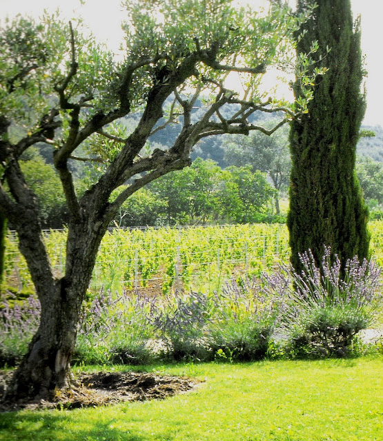 La Bastide de Marie, Ménerbes, (fr) as seen on linenandlavender.net, post:  http://www.linenandlavender.net/2010/01/design-daily_16.html