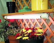 Grow Lights for sale at Charley's Green House