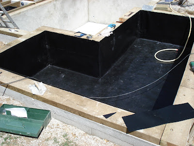 piscine naturelle et baignade naturelle juillet 2008. Black Bedroom Furniture Sets. Home Design Ideas