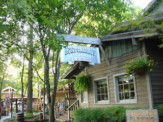 Awe Inspiring Somewhere In The Mountains Dining At Dollywood Home Interior And Landscaping Ymoonbapapsignezvosmurscom