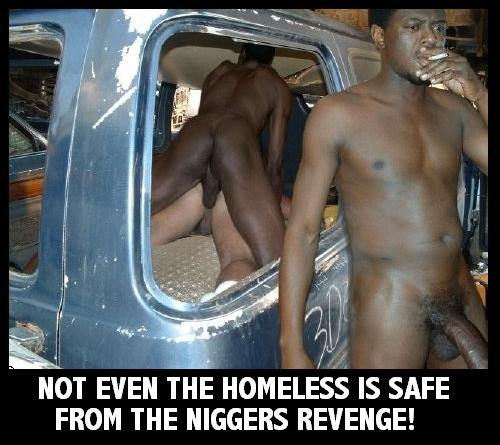 Niggas revenge