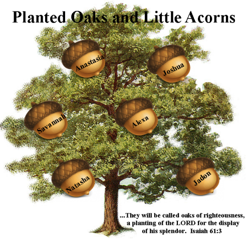 Planted Oaks and Little Acorns