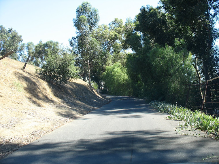 Old Carbon Canyon Road near Carriage Hills #2