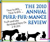 Annual Pur-fur-mance Review!