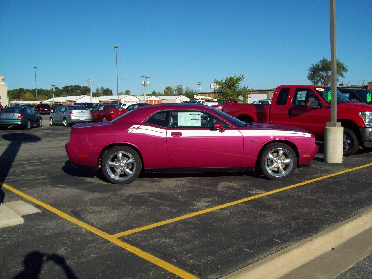 R 2010 Fuscia Challenger T