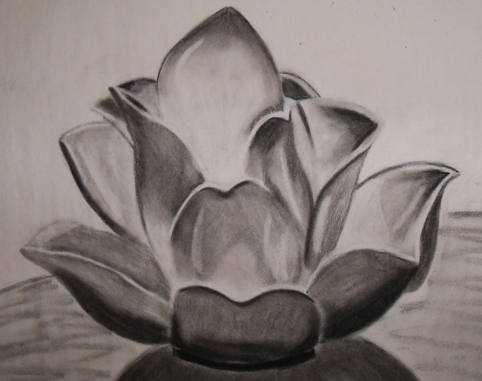 Amy Conner's Art Portfolio: Charcoal Art