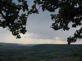Traditions celtes : le chêne, arbre sacré 6