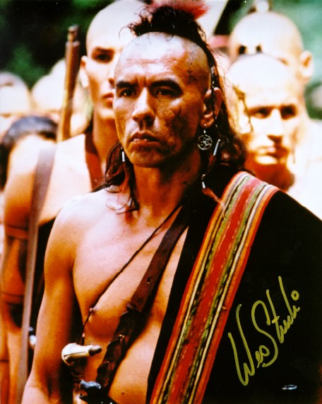 Mohicans Last Historical Errors
