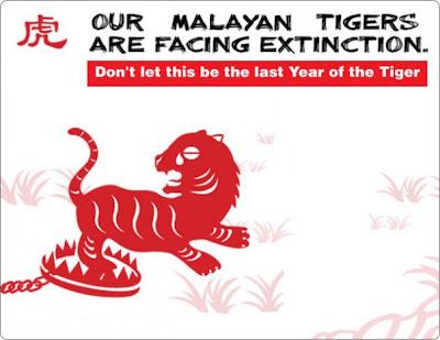 tiger tiger burning bright text