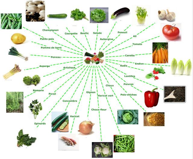 Warzywa - mapa myśli - Francuski przy kawie