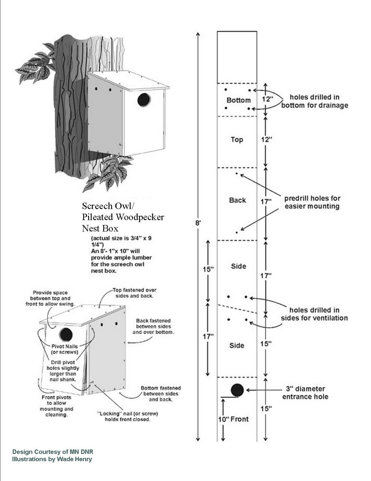 pdf plans pileated woodpecker bird house plans download