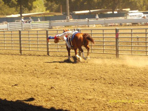 San Benito County Rodeo 2010