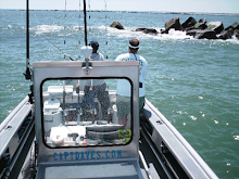 JETTYWOLF...working the big rocks.