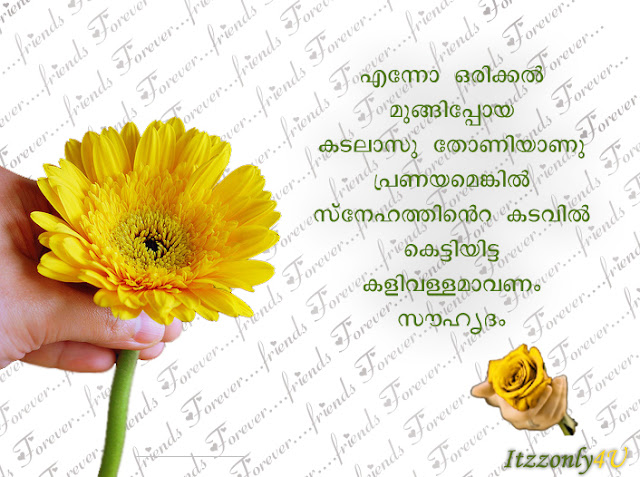 funny new year quotes in malayalam 3 funny new year quotes in