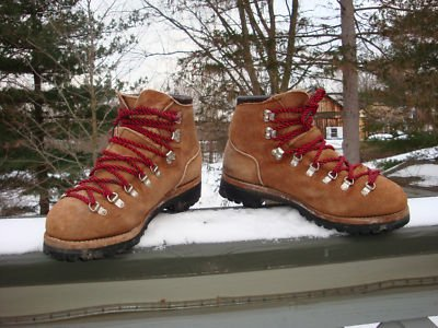 e86bad84c2c Dexter Hiking Boots | Boot End