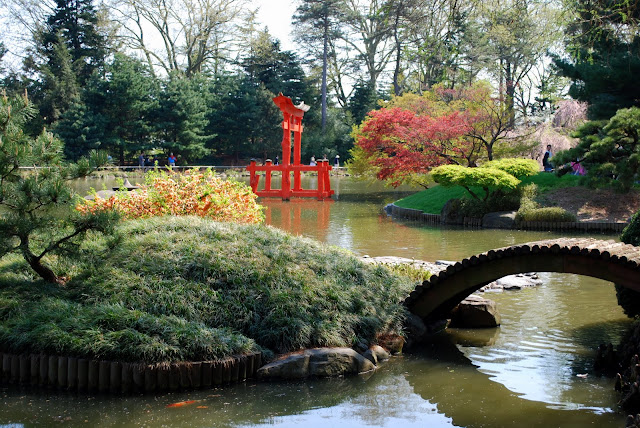 Mille Fiori Favoriti: The Brooklyn Botanic Japanese Hill ...