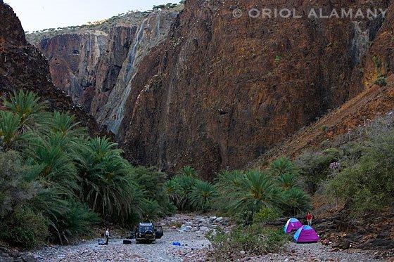 Acampados en un wadi isla Isla de Socotra Yemen