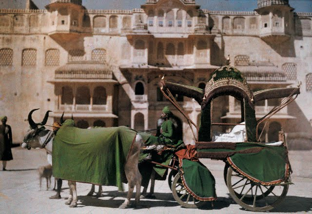 The bullock cart signifies a state occasion - Jaipur 1929