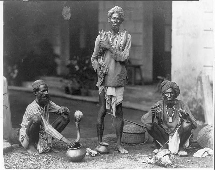 Indian Snake Players - 1890s