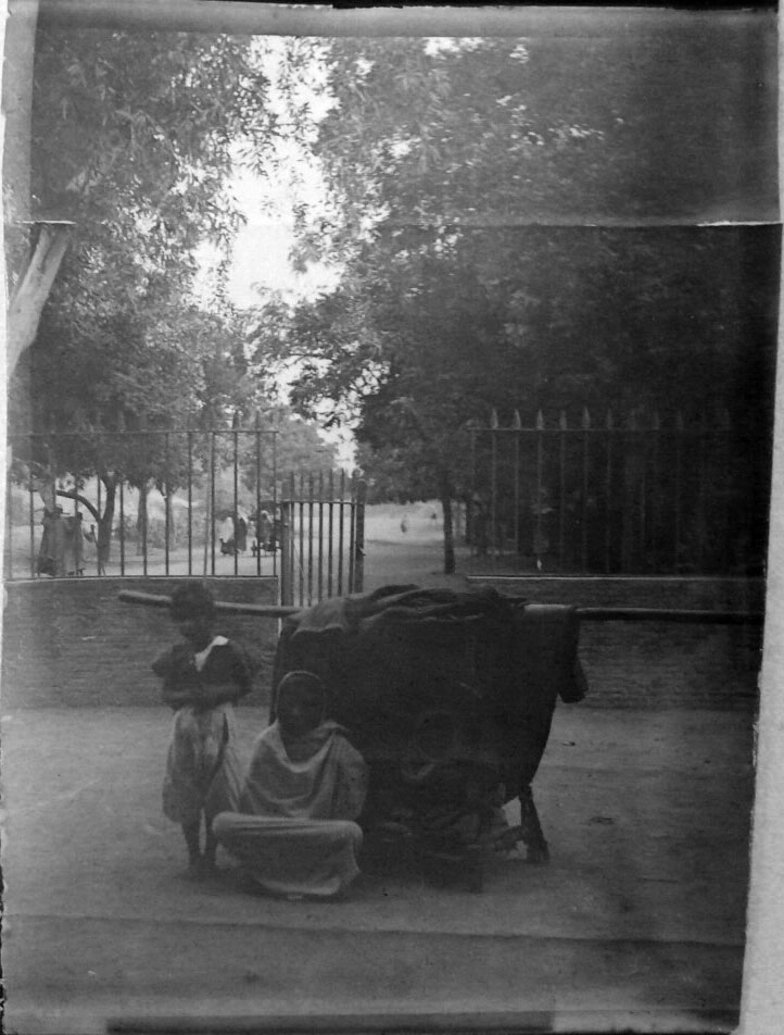 Women and Children Various Photos - 1902