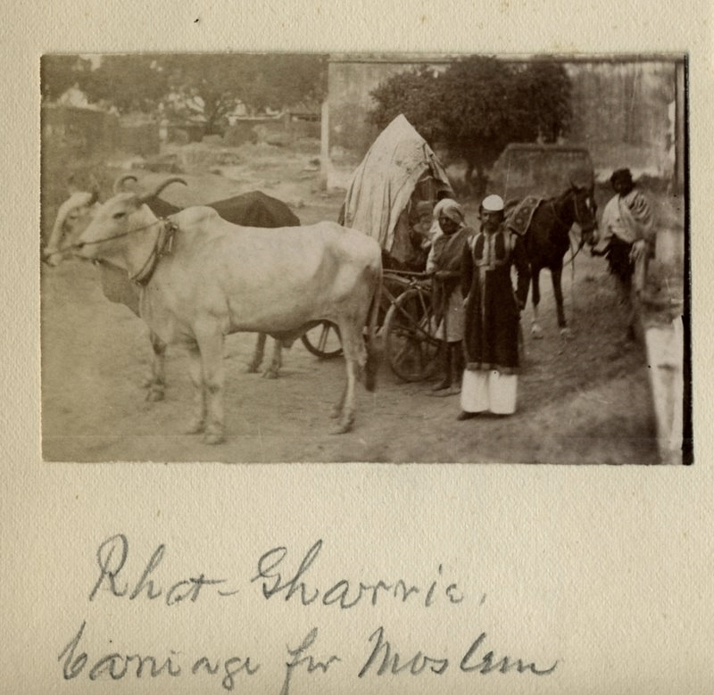 Muslim Man Standing in front of a Bullock Cart - 1880's
