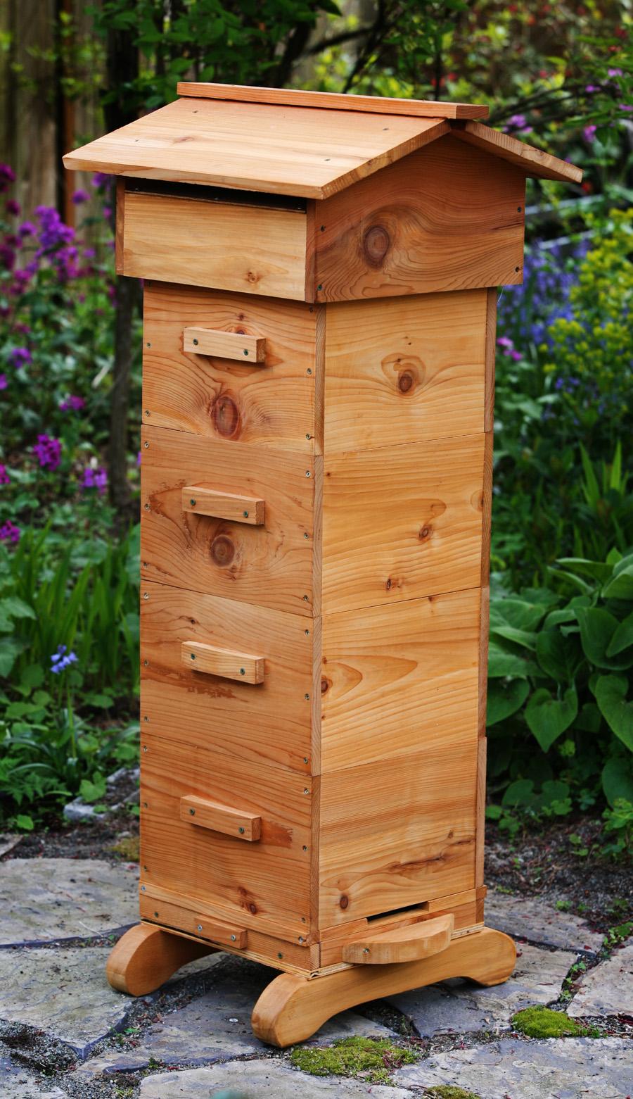 The Phozone: Honey Bees