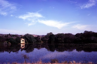 Wildlife can be seen around the many lakes inside Ranthambore National Park like the Padam Talao
