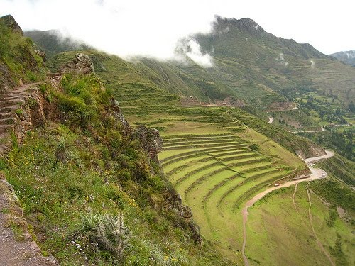 Documentación Para La Didáctica Libart Cultivo En Terrazas