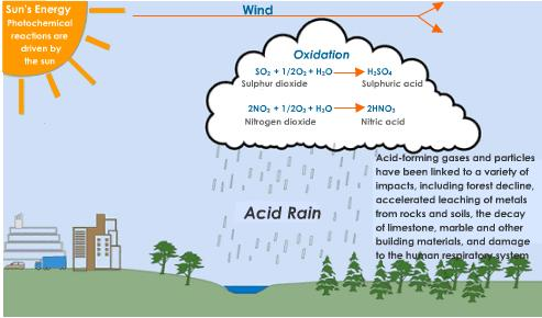 Acid rain in ontario causes effects and prevention