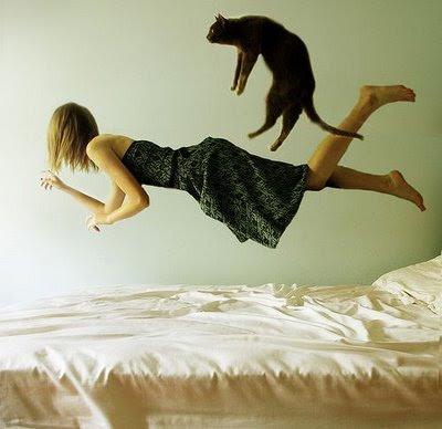 strange-picture-blonde-and-cat-in-air-over-bed-may-be-jumping