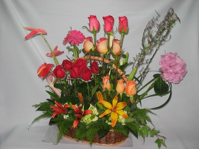 Floreria Quevedo