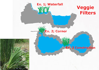 Bog Plant Veggie Filter, construction ideas