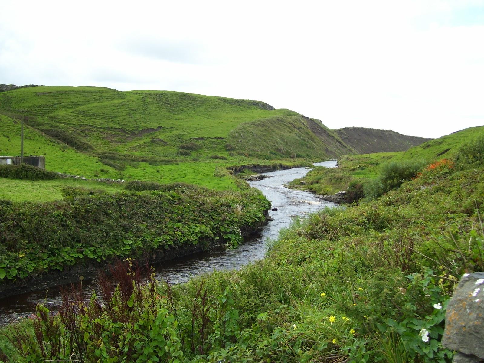 Family Matters Irish Landscapes