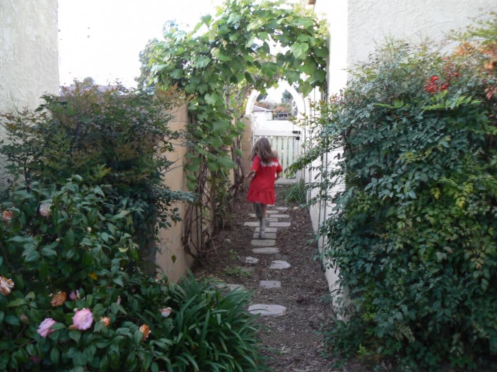 Making Macy: Dilemma in Landscaping: Narrow Side Yards on Narrow Side Yard Landscaping id=54486