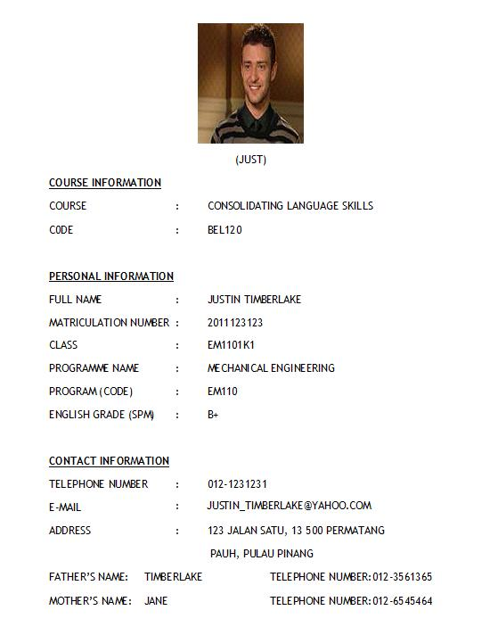 resume format for marriage proposal