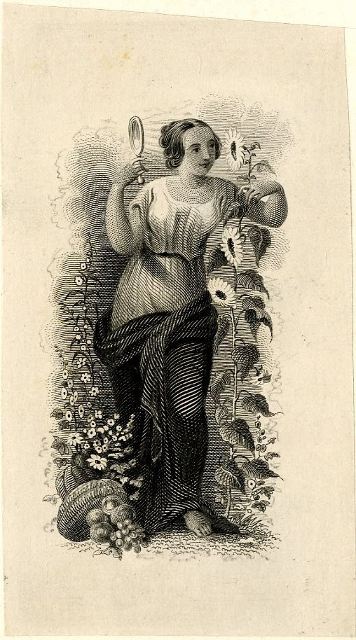 Standing female figure with mirror on the one hand and sunflower on the other. Design printed in black. (19th c)