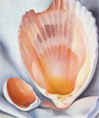 Georgia O Keeffes Seashell Paintings Coastal Decor Ideas