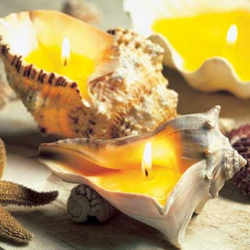 Seashell Candles