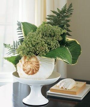Flower Arrangement in Sea Shell Planter Vase